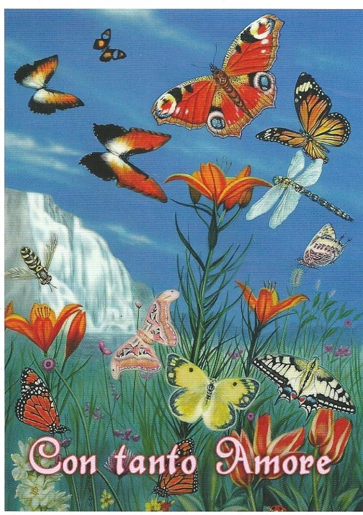 La vita non muore! Si trasforma come le farfalle, che rinascono in primavera!!
