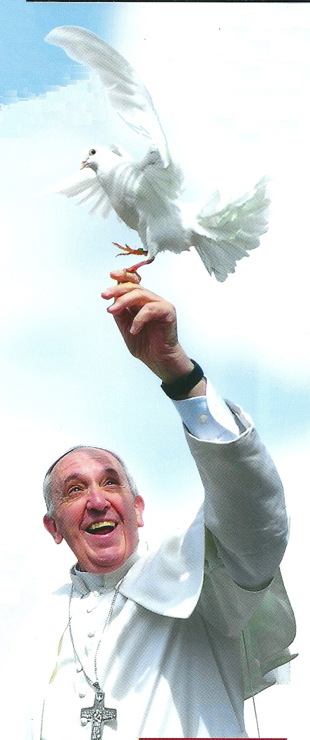 Papa Francesco e la colomba