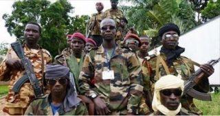 ritorno dei Seleka